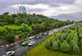 عملکرد ضعیف مدیریت شهری پنجم تهران در توسعه فضاهای سبز