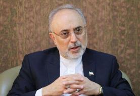 صالحی: ایران به اورانیوم با غنای ۶۰ درصد دست یافت