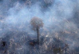 نیاز چند میلیارد دلاری برزیل برای حفاظت از آمازون