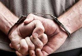 دستگیری مجدد جاعل سکه هایی طلایی