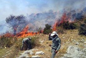 مهار آتشسوزی در منطقه حفاظتشده خامی