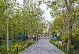 تعطیلی ۲۰۰۰ پارک تهران به مدت ۲ هفته