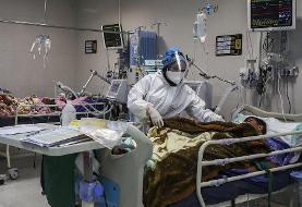 شناسایی ۳ مبتلا بهویروس کرونایآفریقای جنوبی در جنوب ایران