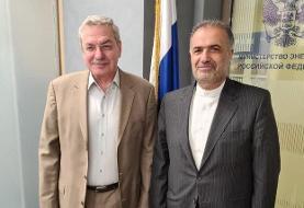 بررسی همکاریهای تهران و مسکو در رایزنی سفیر ایران با معاون وزیر انرژی روسیه