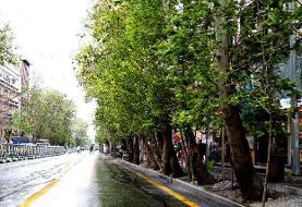 بازسازی خیابان ولیعصر در راستای پروژه ثبت جهانی