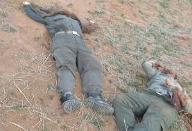 جزئیاتی از قتل دو محیطبان توسط افراد ناشناس + تصاویر