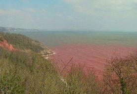 گزارشها از 'حمله به یک کشتی ایرانی در دریای سرخ'
