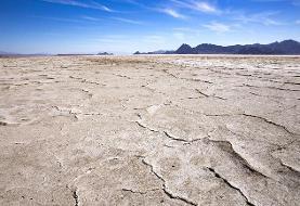 تاثیر خشکی بختگان بر بزرگترین انجیرستان دیم جهان/ آبگیری صفر است