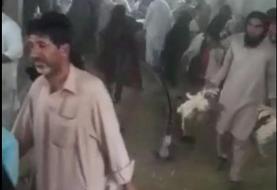 پلیس فتا: عامل انتشار کلیپ حمله به مرغداری نیکشهر به اتهام تشویش اذهان عمومی دستگیر شد