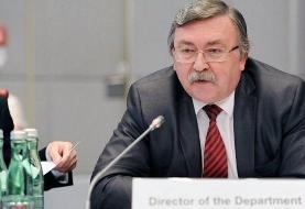 دیپلمات روس: پیشرفت اولیه در وین حاصل شد/ هفته آینده، جلسه بعدی کمیسیون برجام