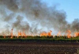 آتشسوزی گسترده در روستایی در اهواز