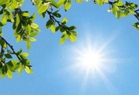افزایش گرما از ۲۵ اردیبهشت در اغلب شهرها/ اهواز با دمای ۴۵ درجه داغ ...