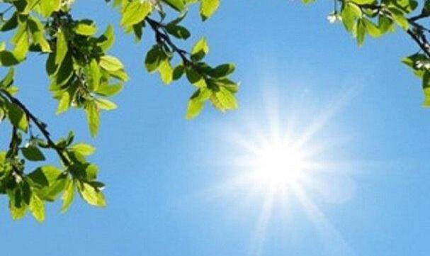 آسمان در اغلب مناطق کشور صاف و آفتابی است