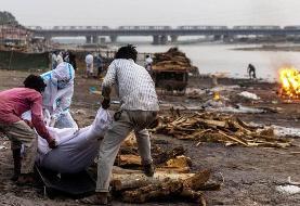 هند / کشف جسد دهها قربانی کرونا در رود گنگ