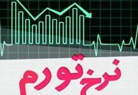 افزایش نرخ تورم تولیدکننده بخش خدمات