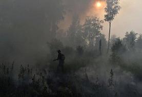 واکنش کربن، اهداف توافقنامه پاریس را تهدید میکند