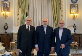 دیدار ظریف با نخست وزیر اسبق و رئیس اتاق بازرگانی ایتالیا و ایران