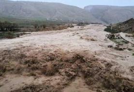 انسداد ۲۰ کیلومتر از راه های فیروزکوه / سیلاب به باغ ها خسارت زد