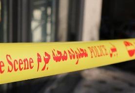 جزییاتی از مرگ عجیب زن دیپلمات سوئیسی در تهران