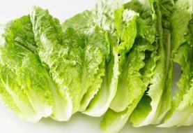 مصرف روزانه سبزیجات پهن برگ و کاهش بیماری قلبی