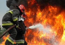انباری لاستیک در مشیریه تهران طعمه آتش شد