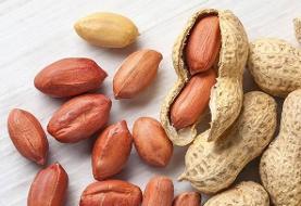ارزش غذایی و فواید مصرف بادام زمینی برای سلامتی