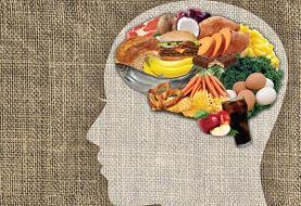 تقویت حافظه با انتخاب رژیم غذایی صحیح