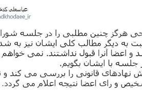 سخنگوی شورای نگهبان: تکذیب سخنان مصلحی درباره ردصلاحیت هاشمی