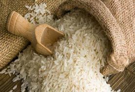 احتمال کمبود برنج خارجی در کشور/مخالفت وزارت جهاد با حذف دوره ممنوعیت واردات برنج