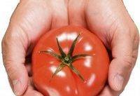 با این ۹ غذای گیاهی، سموم کبد را پاک کنید