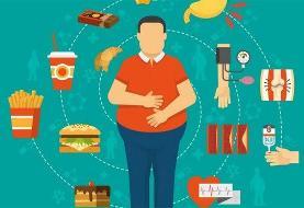 چرا لاغر نمیشویم؟ / ۵ اشتباهی که برای رهایی از وزن اضافی مرتکب میشویم