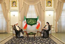محمدی گلپایگانی با رئیس جمهوری منتخب دیدار کرد