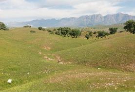 ۳۱ هزار هکتار از اراضی حریم شهرها به منابع طبیعی بازگشت