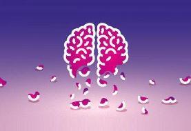 تغییرات مغزی که زمینه ساز آلزایمرند