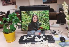 تسلیت رایزن فرهنگی ایران در لبنان برای درگذشت خبرنگار ایسنا