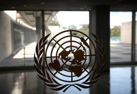 همدردی دفتر سازمان ملل در تهران با خانواده درگذشتگان و مصدومان