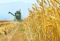 امنیت غذایی و صنعت کشاورزی، ایران را کویر می&#۸۲۰۴;کند