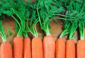 خواص بینظیر برگ هویج برای سلامت | موارد استفاده از برگهای هویج