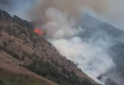 اعزام بالگردهای وزارت دفاع به گالیکش گلستان برای  خاموش کردن آتش سوزی ها