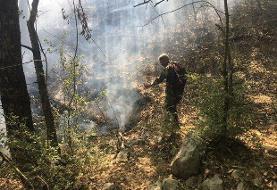گزارشی از آتش سوزی از منطقه «دیل» گچساران نداشتیم