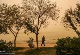 خیزش گردوخاک شدید در شرق و جنوب اصفهان/ شرایط ورزنه بدتر است