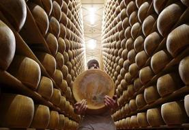 پنیرهای گرانقیمت به جای وثیقه وام بانکی (عکس)
