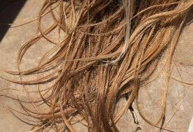 عوارض جانبی اتوی مو که کمتر کسی میداند