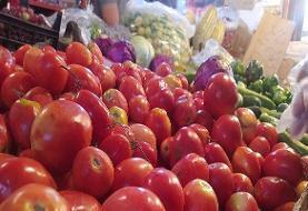 قیمت گوجه فرنگی به بیش از ۱۰ هزار تومان رسید