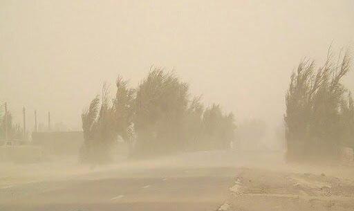 ویدئو | طوفان شدید در هرمزگان جان جوان ۲۶ ساله را گرفت