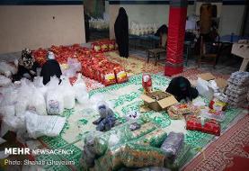 توزیع ۵۰۰ بسته ارزاق در دهه ولایت