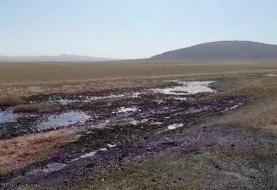 تیر خلاص بر پیکر گاوخونی: تالاب زاینده رود غرق در فاضلاب و لجن نفتی
