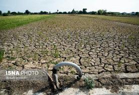 در مدیریت منابع آب،