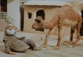 ساخت «جانشین» به پایان رسید/ قصه عصار و شترش