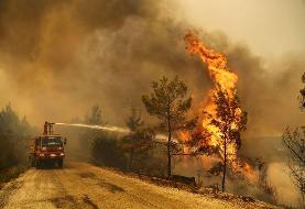 آتش سوزی ترکیه؛ مرگ ۲ آتش نشان و سوختن هزاران سازه (عکس)